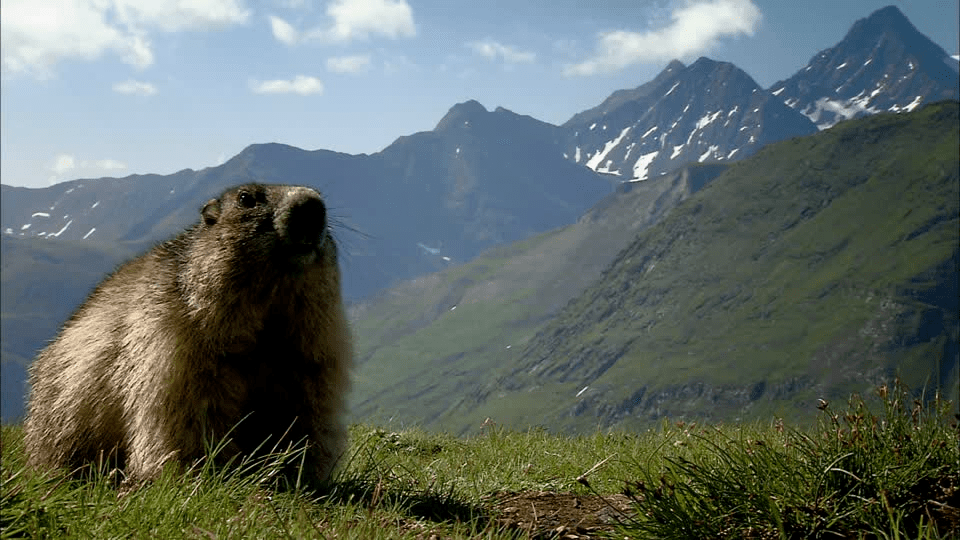 La naturaleza de Austria