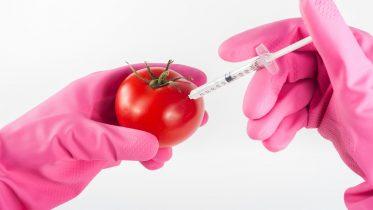 Cuáles son los riesgos de la manipulación genética